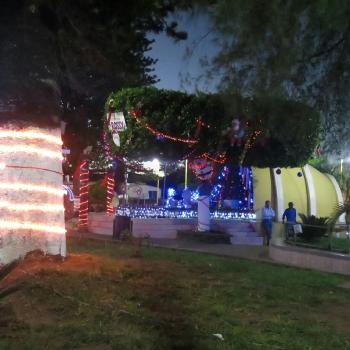 christmas-2015-23